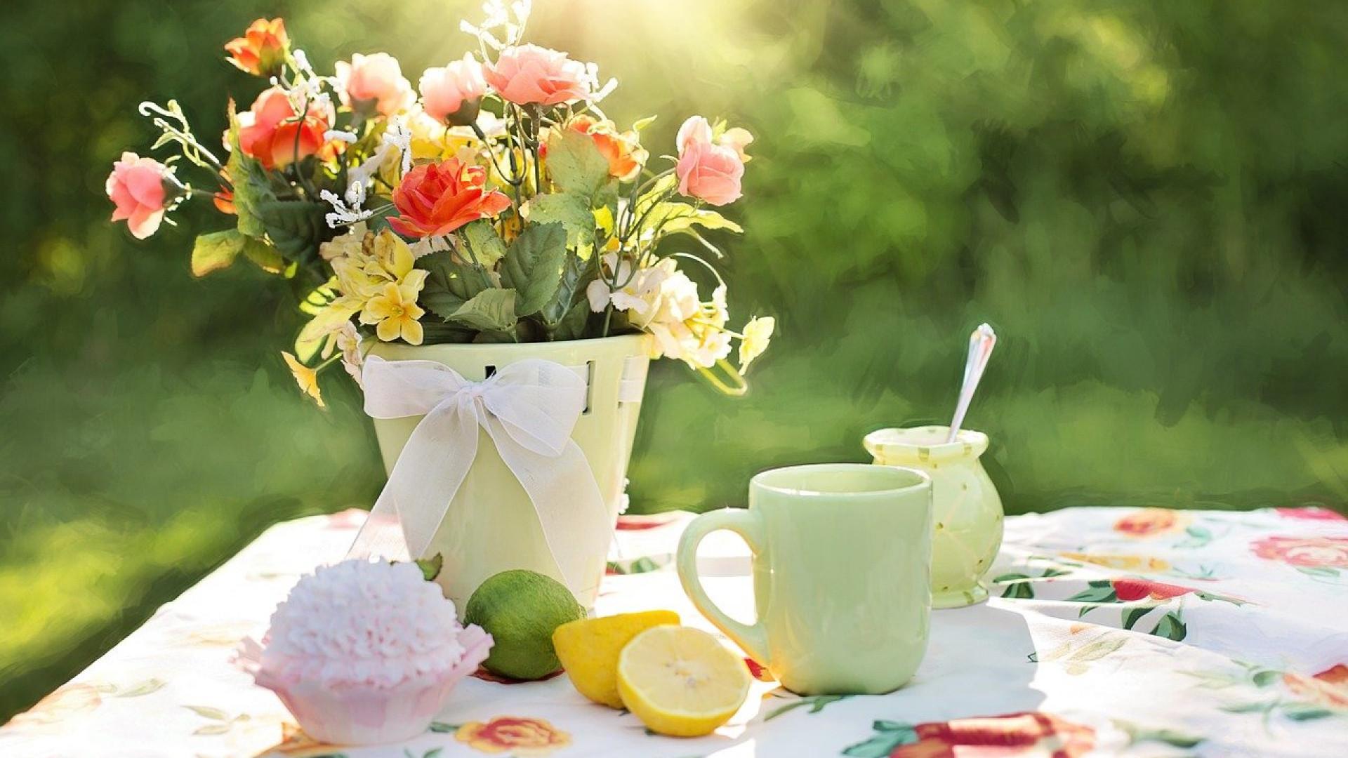 Optimisez la décoration de votre jardin avec un fauteuil design